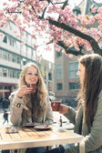 Two women in a cafe — Stock Photo