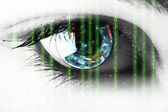 Source code in the eye — Stock Photo