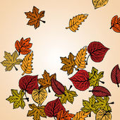 Autumn leaves background vector concept — Stock Photo