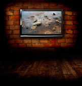 Plasma TV on the wall of the room with wooden floor — Стоковое фото