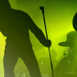 Band in the concert — Stock Photo #26211371