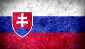 Slovakian Flag — Stock Photo