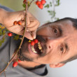 Man picking up wild rose hip — Stockfoto