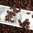 Background of dollar bills and coffee beans  — Stock Photo
