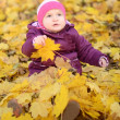 Small baby with autumn branch of tree - Stock Photo