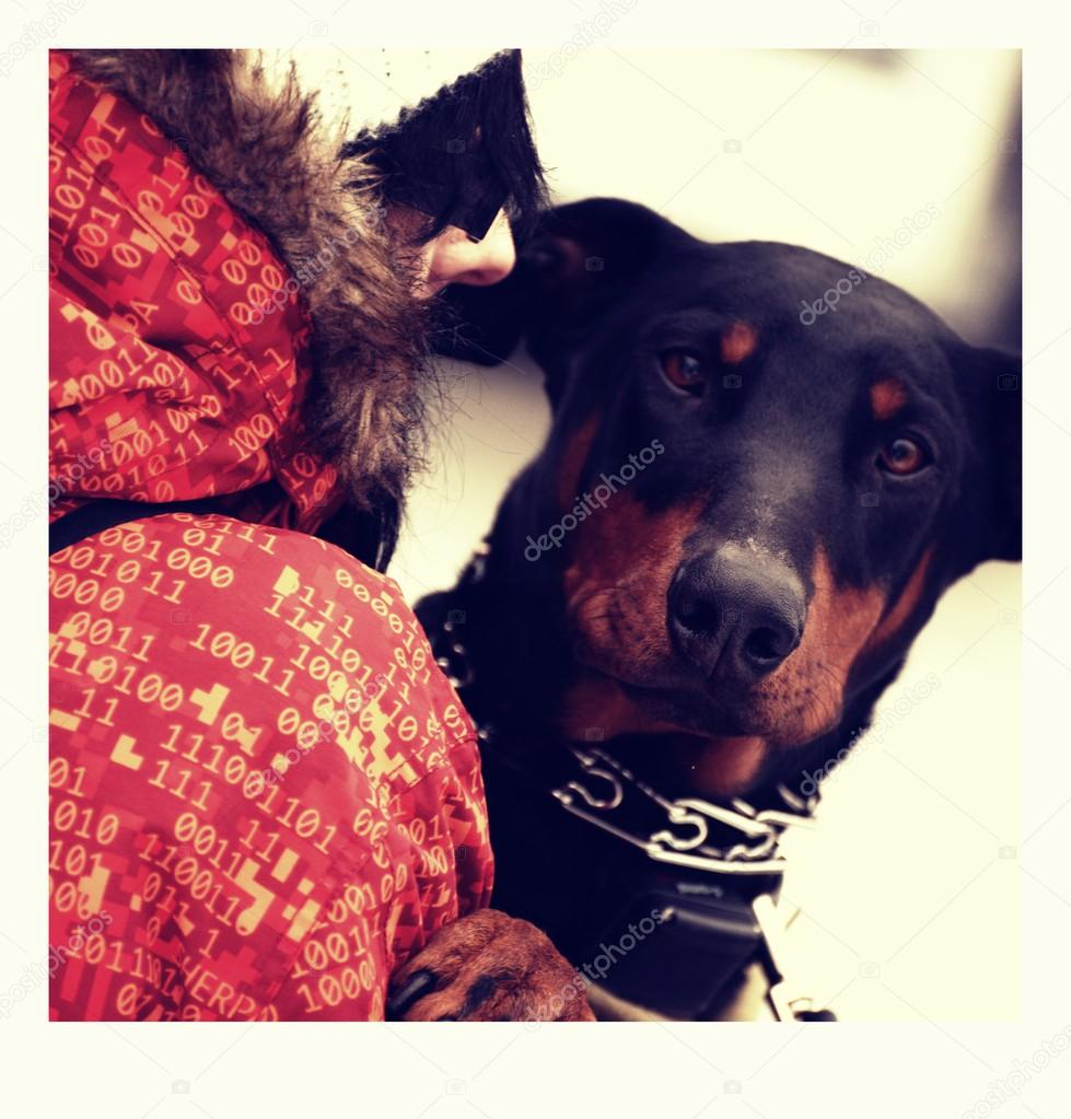 Doberman in winter — Stock Photo #16822843