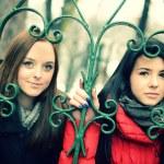 Two girls enjoying the winter season — Stock Photo #21120077