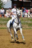 Vrouw op paard — Stockfoto