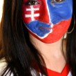 Slovakian Fan — Foto Stock