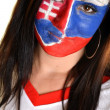 Slovakian Fan — Stockfoto