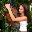 Beautiful woman and horse — Stock fotografie