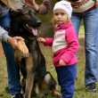 Little girl and German Shepherd dog — Stock Photo