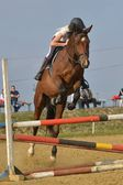 Horse at jumping competition — Stockfoto