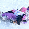 Stock Photo: Sledding, winter fun, snow, family sledding