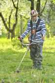 Man cutting grass — Stock Photo
