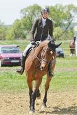 Cavalier de saut d'obstacles — Photo
