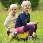 Portrait of two cute little girls — Stock Photo #47133423