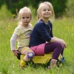 Portrait of two cute little girls — Stock Photo #47133709