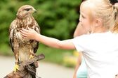 A girl and a hawk — Stock Photo
