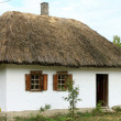 Stock Photo: Ukrainivillage house