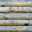 Wooden logs with pattern grunge background — Stock Photo