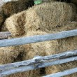 Hay in the old barn — Stock Photo