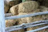 Heno en el antiguo granero — Foto de Stock