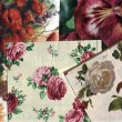 Stock Photo: Set of decorative floral patterns