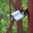 Royalty-Free Stock Photo: Old padlock on an iron fence