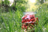 Glass jar with fresh ripe strawberries — Stock Photo