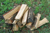 Stack of chopped firewood on natural green background close — Stock Photo