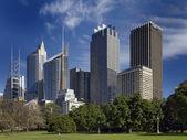 Sydney skyline — Stockfoto