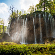 High forest waterfalls — Stock Photo