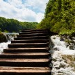 Stock Photo: Wet wooden stairs with whitewater and forest