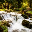Royalty-Free Stock Photo: Waterfalls in the forest, Krka national park, Croatia