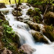 Whitewater running in the forest. Plitvice Lakes National Park, — Stock Photo