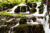 Forest waterfall in Plitvice Lakes National Park, Croatia — Stock Photo