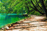 Path near a forest lake in Plitvice Lakes National Park, Croatia — Stock Photo