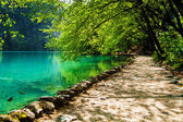 Path near a forest lake with fish in Plitvice Lakes National Par — Stock Photo