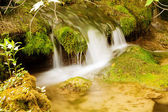 Small waterfall, Krka national park, Croatia — Stock Photo