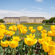 Schonbrunn Palace Gardens at Vienna, Austria — Stock Photo