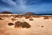Paisagem da ilha de la grasiosa - canárias — Foto Stock