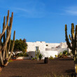 Lanzarote  white typical house - Stock Photo