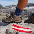Marked trail and feet — Stock Photo