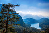 Alpsee valley Bavarian alps, Fussen, Germany — Stock Photo