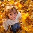 Little girl with autumn leaves — Stock Photo #29611139