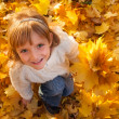 Little girl with autumn leaves — Stock Photo #31125773