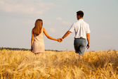 Inlove couple walking through wheat field — Stock Photo