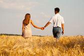 Inlove couple walking through wheat field — Stock Photo