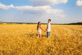 Young couple walking through wheat field — Stock Photo